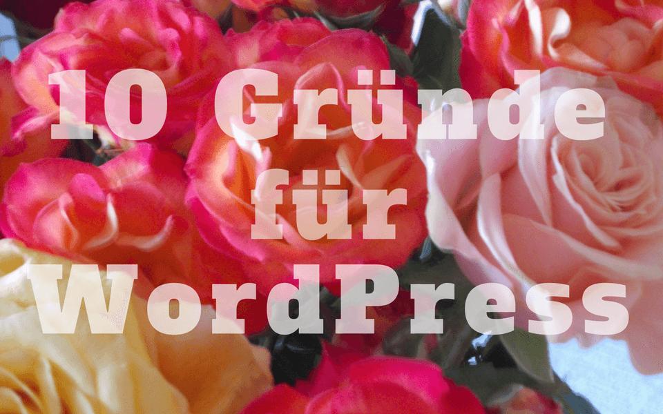 10 gute Gründe für WordPress